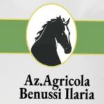Azienda Agricola Ilaria Benussi