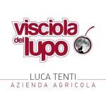 Azienda Agricola Luca Tenti