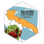 infografica millefiori prevalenza ciliegio