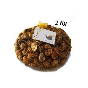 Lumache 2 kg