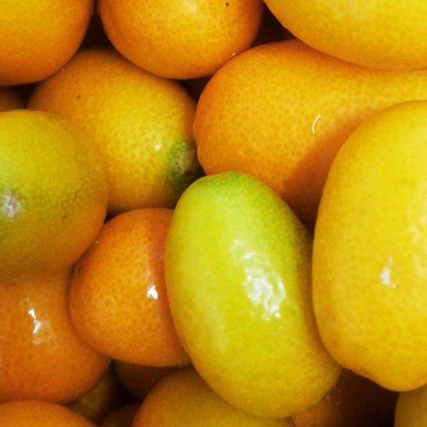 armellata Extra di Kumquat o Mandarino Cinese con pezzi di frutta 2