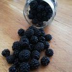 Confettura Extra di More selvatiche del Vesuvio con frutta a pezzi galleria