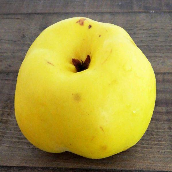 Confettura Extra di Mela Cotogna con frutta a pezzi galleria 2